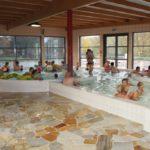 2013-11-17 zwembad De Kleine Dender 027a