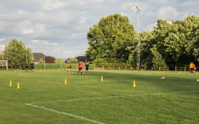 VoetbalveldSchepdaal